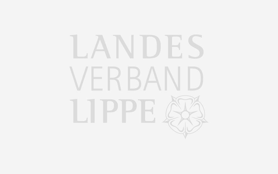 Landesverband Lippe im Schloss Brake derzeit telefonisch nicht erreichbar